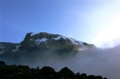 Kilimanjaro 14_12